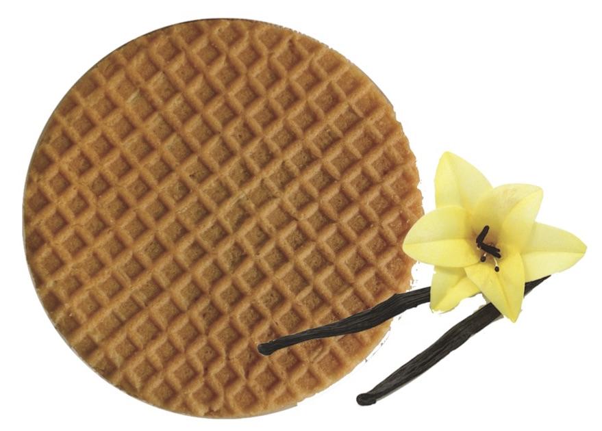 one_waffle_vanilla